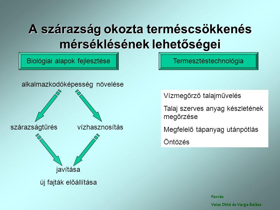 Forrás Veisz Ottó és Varga Balázs A szárazság okozta terméscsökkenés mérséklésének lehetőségei Biológiai alapok fejlesztéseTermesztéstechnológia alkal