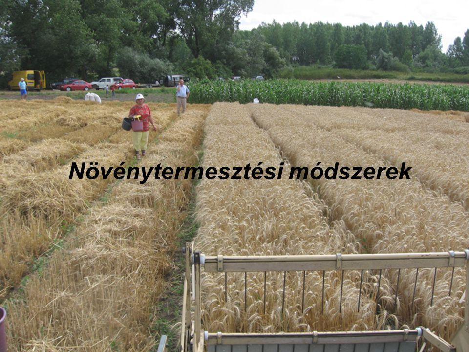 Növénytermesztési módszerek