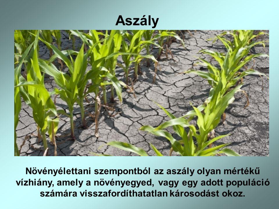 Aszály Növényélettani szempontból az aszály olyan mértékű vízhiány, amely a növényegyed, vagy egy adott populáció számára visszafordíthatatlan károsod
