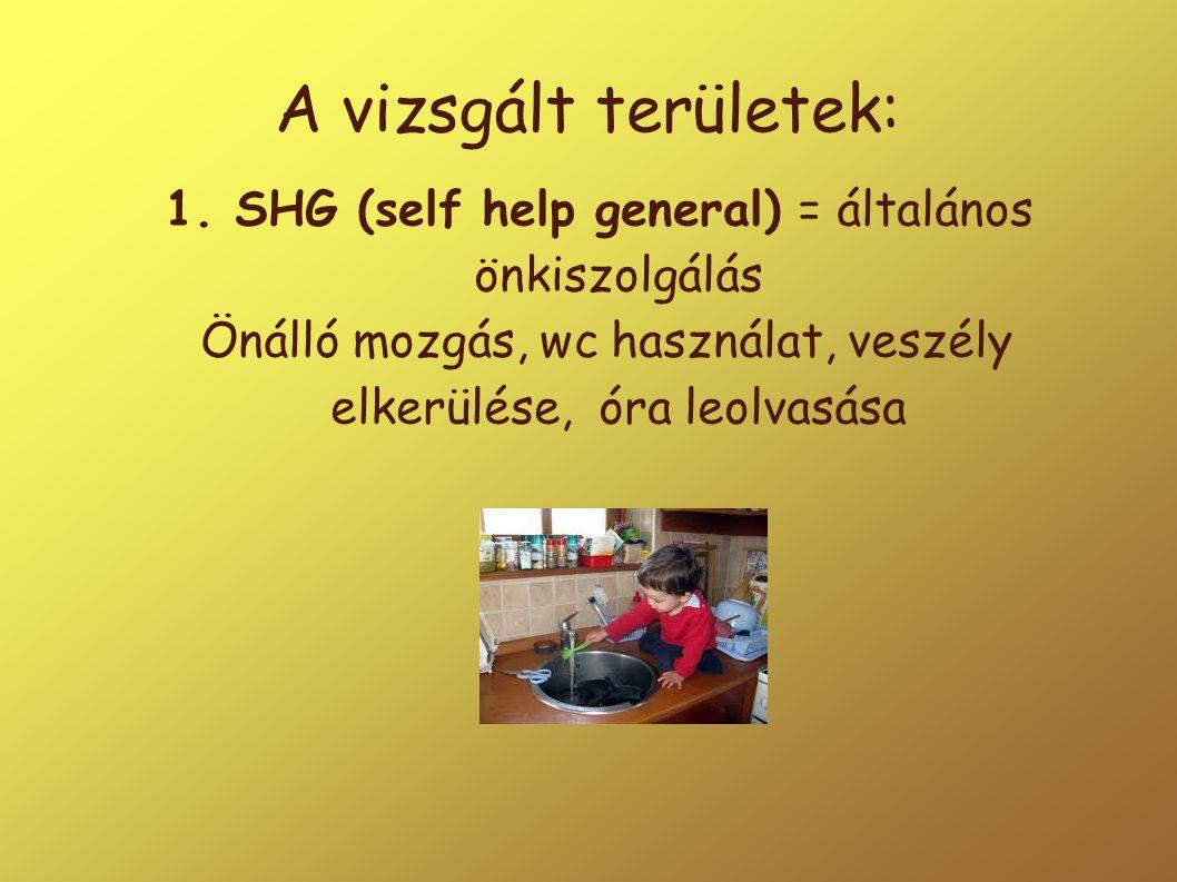 A vizsgált területek: 1. SHG (self help general) = általános önkiszolgálás Önálló mozgás, wc használat, veszély elkerülése, óra leolvasása