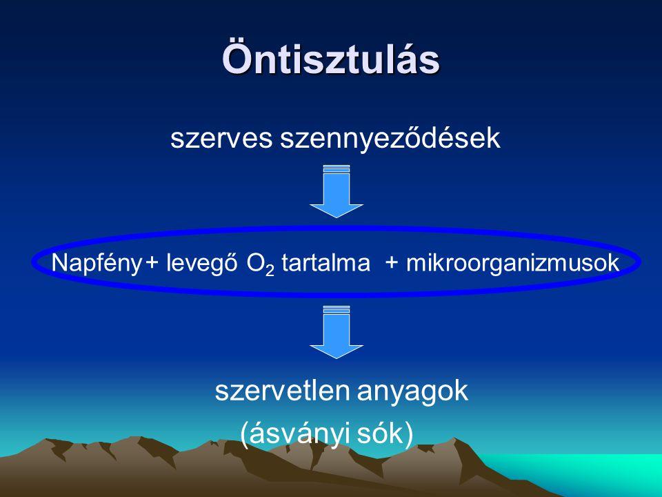 Öntisztulás szerves szennyeződések szervetlen anyagok (ásványi sók) Napfény+ mikroorganizmusok+ levegő O 2 tartalma