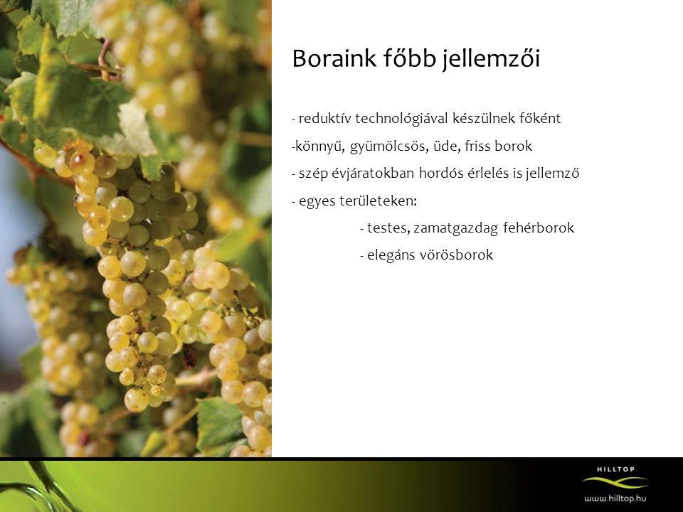 Boraink főbb jellemzői - reduktív technológiával készülnek főként -könnyű, gyümölcsös, üde, friss borok - szép évjáratokban hordós érlelés is jellemző - egyes területeken: - testes, zamatgazdag fehérborok - elegáns vörösborok