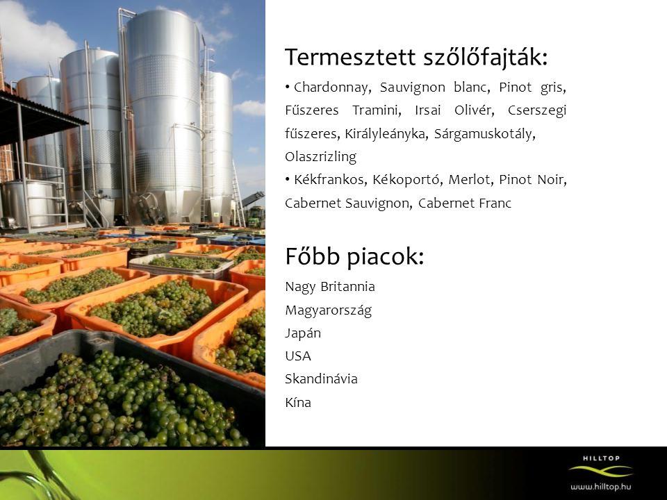 Hilltop Borhotel és Étterem - 300 hektár szőlő ölelésében - 8 db 2 ágyas szoba - több mint 200 férőhelyes étterem - 35 km hosszanti Duna - panoráma - szabadtéri úszómedence - borkóstoló programok - kiváló rendezvény helyszín • esküvő • céges rendezvények • szabadtéri rendezvények • szüreti programok
