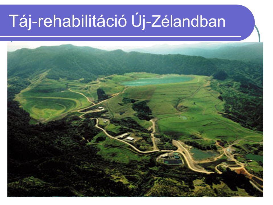  1990 bánya nyitás  1991-1998 aktív bányaüzem  2001 táj-rehabilitáció befejezése Táj-rehabilitáció Új-Zélandban