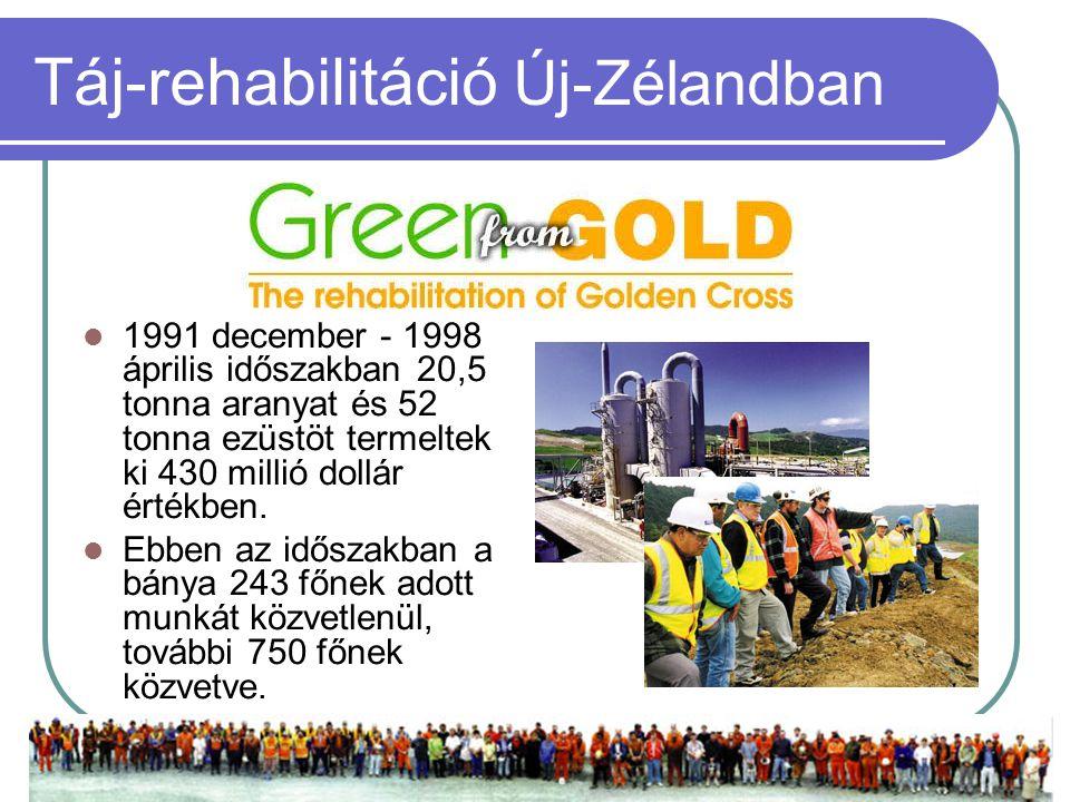  1991 december - 1998 április időszakban 20,5 tonna aranyat és 52 tonna ezüstöt termeltek ki 430 millió dollár értékben.