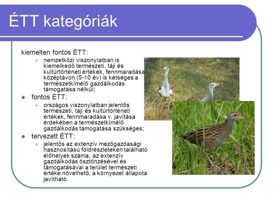 ÉTT kategóriák kiemelten fontos ÉTT:  nemzetközi viszonylatban is kiemelkedő természeti, táji és kultúrtörténeti értékek, fennmaradása középtávon (5-