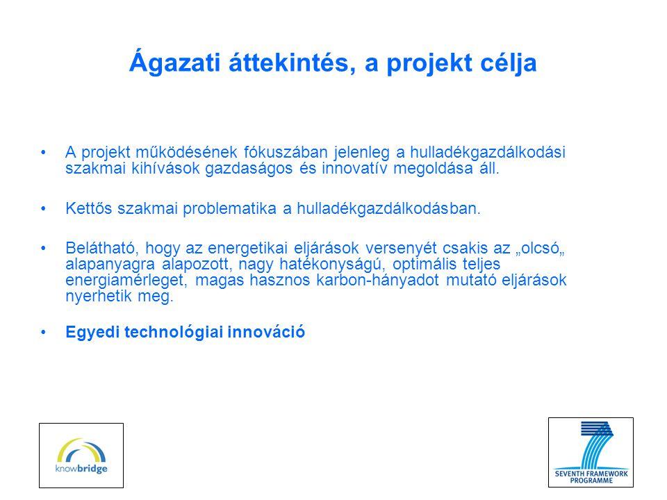 Termékek, szolgáltatások •Jól értékesíthető, új termékek jelennek meg: (szintézisgáz, folyékony C02, metanol, CaCl2) •Metanol (Kihozatal: 6 000 000 kg/év) •Folyékony C02 (Kihozatal: 11 000 000 kg/év) •CaCl2 (Kihozatal: 540 000 kg/év) •Az értékteremtés mellett a hulladékkezelő vállalkozásoknak jelentősen kisebb mennyiségű hulladékot szükséges deponálniuk (ártalmatlanítás), így a hulladéklerakók élettartama nő.