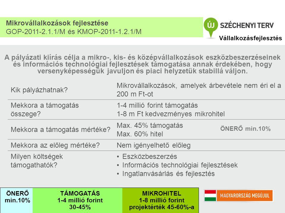 Kötelező vállalások: 1.Létszámtartás 2.Elért eredmény a) Üzemi eredmény növekedése A projekt befejezési évét közvetlenül követő 2.
