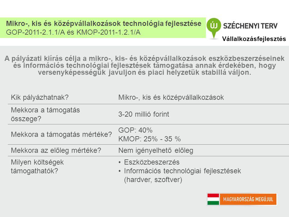 A pályázati kiírás célja a mikro-, kis- és középvállalkozások eszközbeszerzéseinek és információs technológiai fejlesztések támogatása annak érdekében