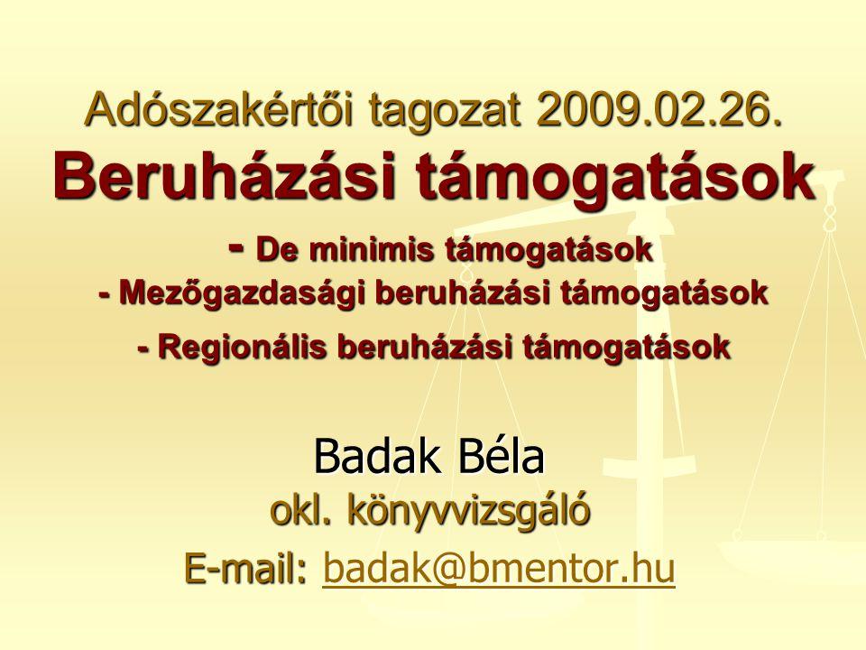 Adószakértői tagozat 2009.02.26. Beruházási támogatások - De minimis támogatások - Mezőgazdasági beruházási támogatások - Regionális beruházási támoga