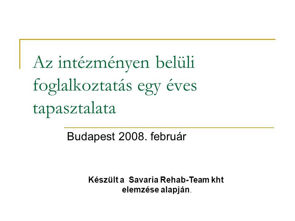 Az intézményen belüli foglalkoztatás egy éves tapasztalata Budapest 2008.
