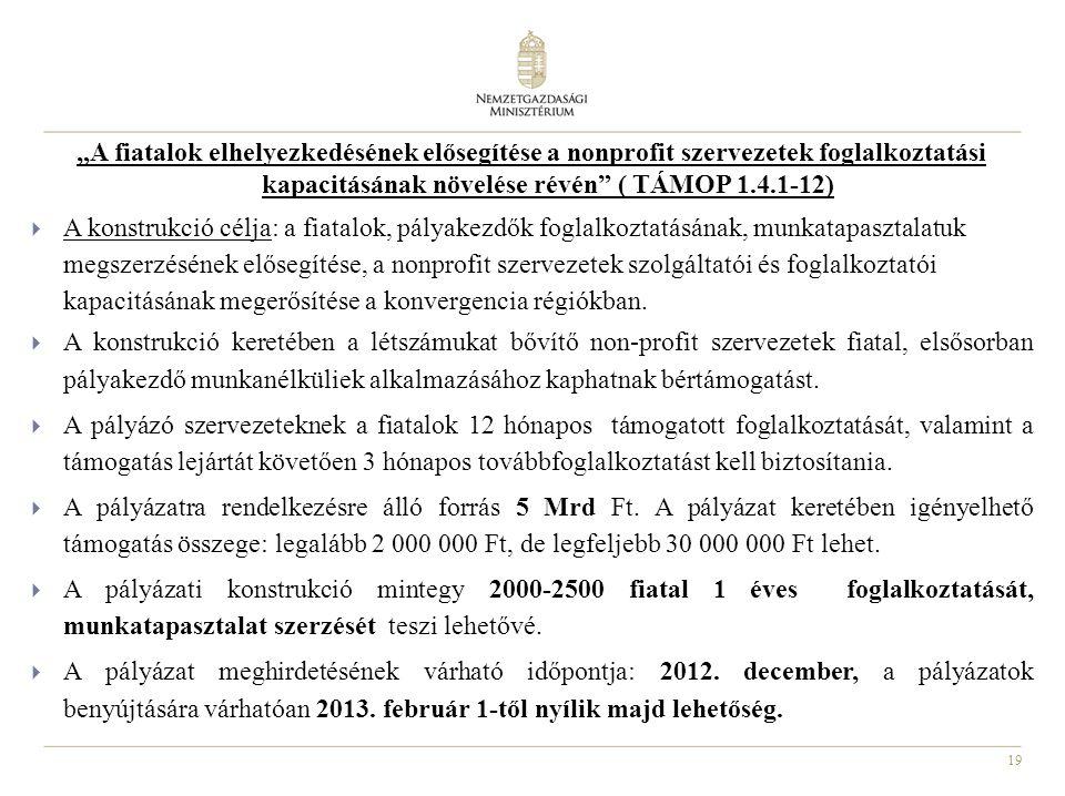 """19 """"A fiatalok elhelyezkedésének elősegítése a nonprofit szervezetek foglalkoztatási kapacitásának növelése révén"""" ( TÁMOP 1.4.1-12)  A konstrukció c"""