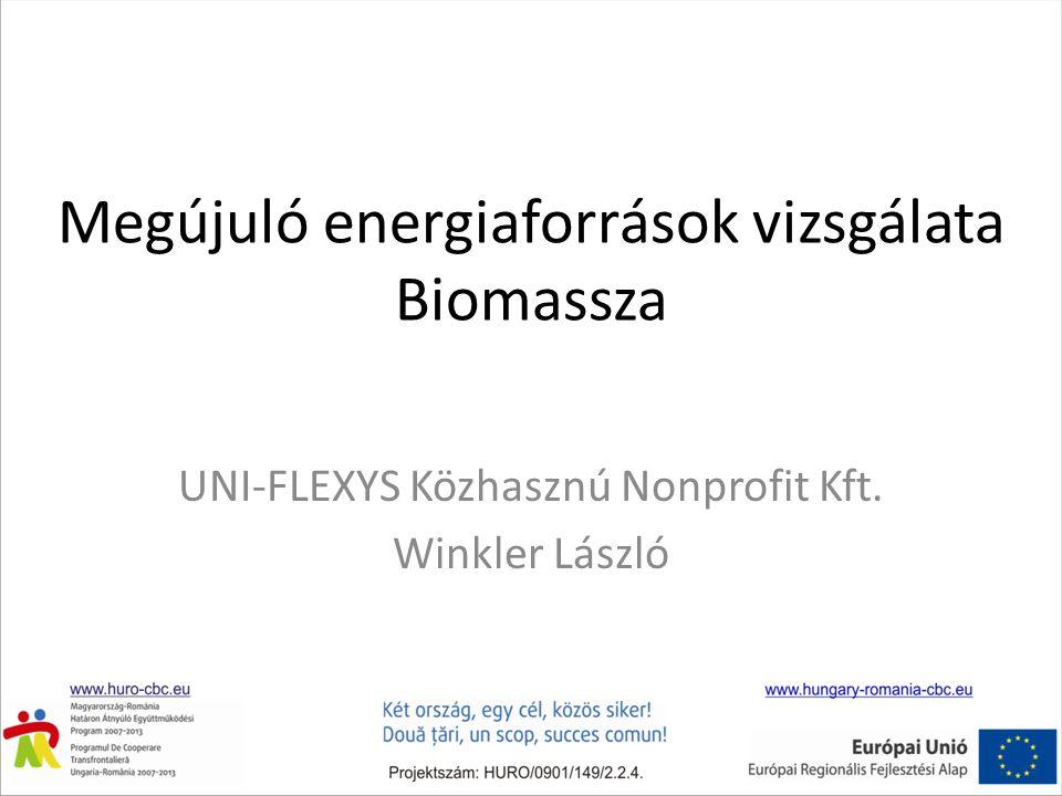 Megújuló energiaforrások vizsgálata Biomassza UNI-FLEXYS Közhasznú Nonprofit Kft. Winkler László