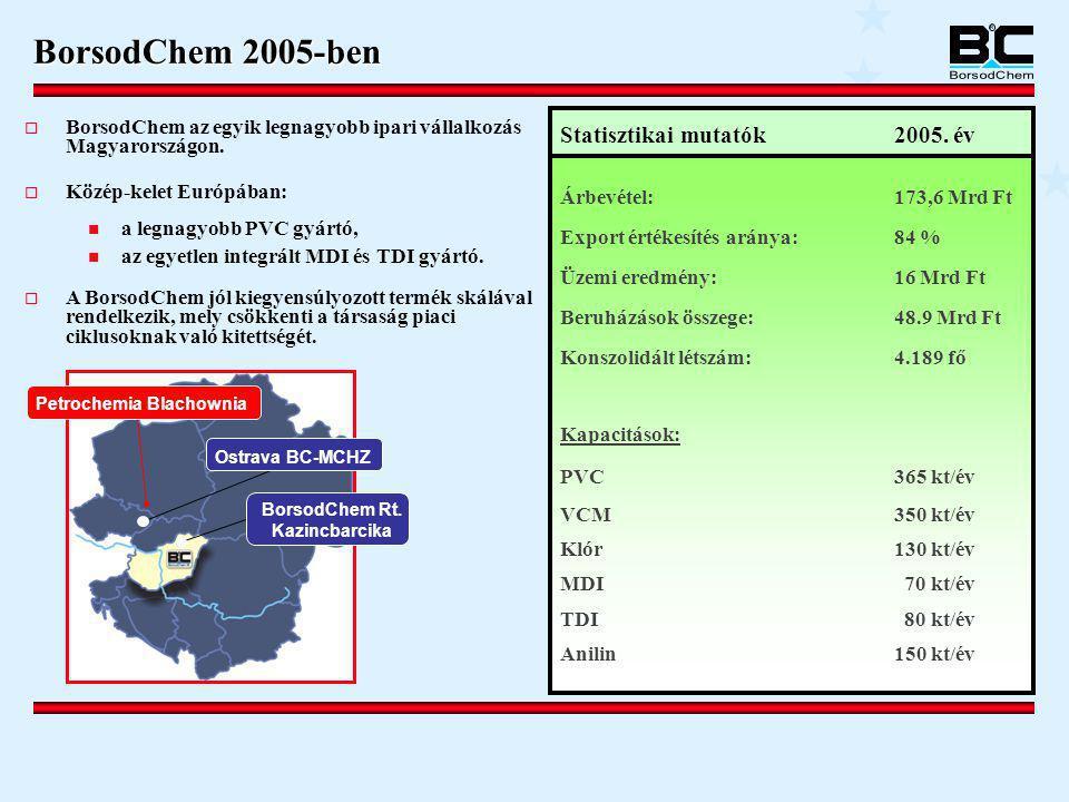 BorsodChem 2005-ben  BorsodChem az egyik legnagyobb ipari vállalkozás Magyarországon.  Közép-kelet Európában:  a legnagyobb PVC gyártó,  az egyetl