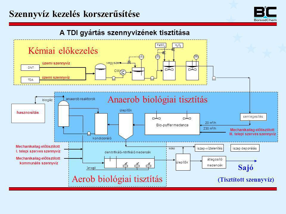 DNT TDA ülepítők iszap iszap-víztelenítés üzemi szennyvíz CW pH vegyszer FeSO 4 H 2 O 2 TOC iszap deponálás Redox Bio-puffer medence ülepítők kondicio
