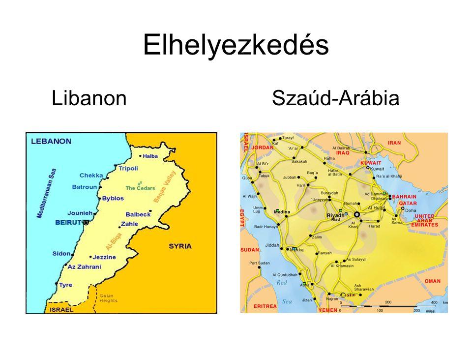 Libanon éghajlati jellemzők Szaúd-Arábia •750-1000 mm csapadék •300 nap napos idő •Enyhe esős tél •Alig 100 mm csapadék •Sivatagban nagy hőmérséklet különbség