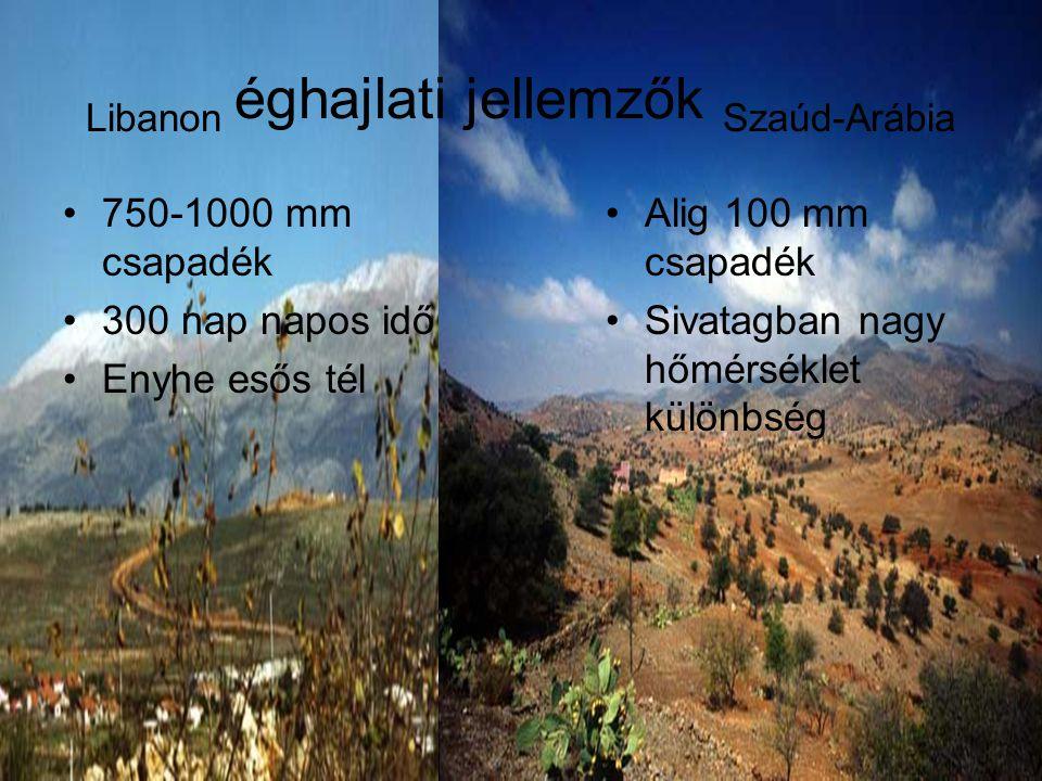Libanon éghajlati jellemzők Szaúd-Arábia •750-1000 mm csapadék •300 nap napos idő •Enyhe esős tél •Alig 100 mm csapadék •Sivatagban nagy hőmérséklet k