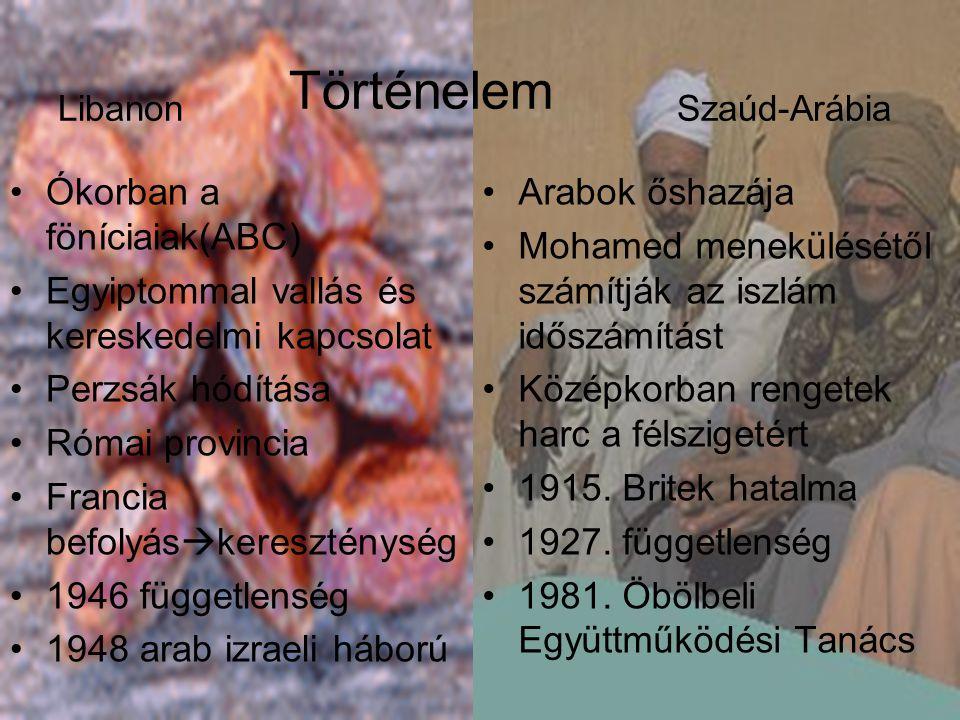Libanon Adatok Szaúd-Arábia •Népesség:3.826.018 •Népsűrűség:358fő/km² •Terület:10.230km 2 •Főváros: Beirút •Beszélt nyelvek: arab, angol, francia, örmény •Pénznem: libanoni font (LPB) •Hívószám: +961 •Népesség: 21.504.613 •Népsűrűség:12fő/km² •Területe:2.240.000km 2 •Főváros: Rijád •Beszélt nyelvek: arab •Pénznem: szaúdi riyál (SAR) •Hívószám :+996