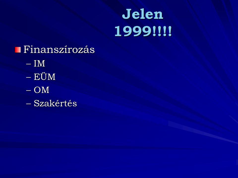 Jelen 1999!!!! Finanszírozás –IM –EÜM –OM –Szakértés
