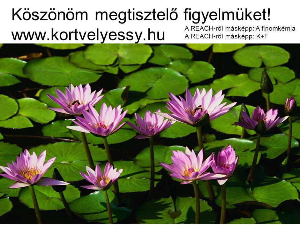 Köszönöm megtisztelő figyelmüket! www.kortvelyessy.hu A REACH-ről másképp: A finomkémia A REACH-ről másképp: K+F