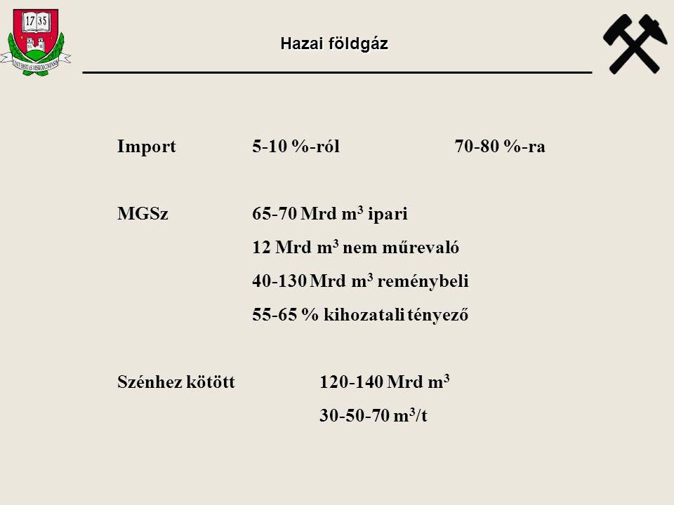 Import5-10 %-ról70-80 %-ra MGSz65-70 Mrd m 3 ipari 12 Mrd m 3 nem műrevaló 40-130 Mrd m 3 reménybeli 55-65 % kihozatali tényező Szénhez kötött 120-140