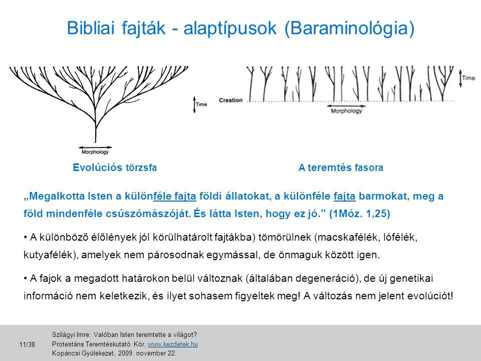 """Bibliai fajták - alaptípusok (Baraminológia) Evolúciós törzsfaA teremtés fasora """"Megalkotta Isten a különféle fajta földi állatokat, a különféle fajta"""