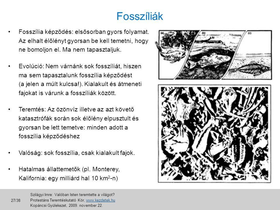 Fosszíliák •Fosszília képződés: elsősorban gyors folyamat. Az elhalt élőlényt gyorsan be kell temetni, hogy ne bomoljon el. Ma nem tapasztaljuk. •Evol