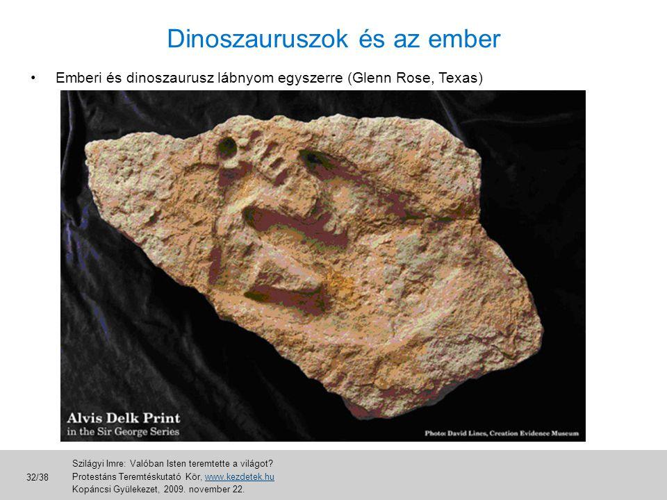 Dinoszauruszok és az ember •Emberi és dinoszaurusz lábnyom egyszerre (Glenn Rose, Texas) Szilágyi Imre: Valóban Isten teremtette a világot? Protestáns