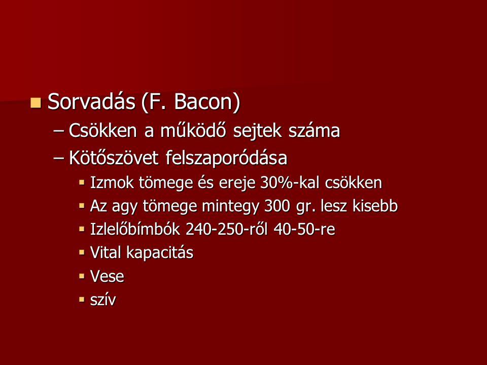  Sorvadás (F. Bacon) –Csökken a működő sejtek száma –Kötőszövet felszaporódása  Izmok tömege és ereje 30%-kal csökken  Az agy tömege mintegy 300 gr