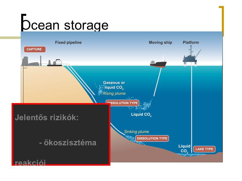 Ocean storage Jelentős rizikók: - ökoszisztéma reakciói - pH változás
