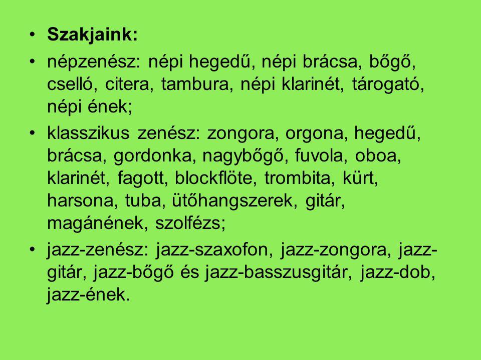 •Szakjaink: •népzenész: népi hegedű, népi brácsa, bőgő, cselló, citera, tambura, népi klarinét, tárogató, népi ének; •klasszikus zenész: zongora, orgo