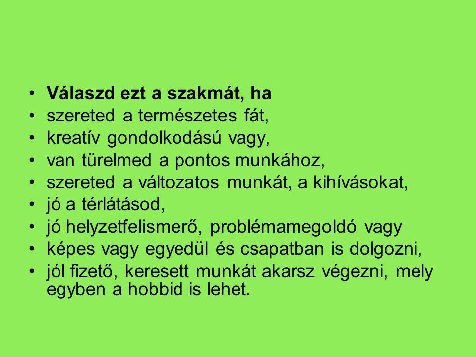 HOL.•Barabás György Műszaki Szakközépiskola és Szakiskola •Cím: 9600 Sárvár, Kisfaludy S.
