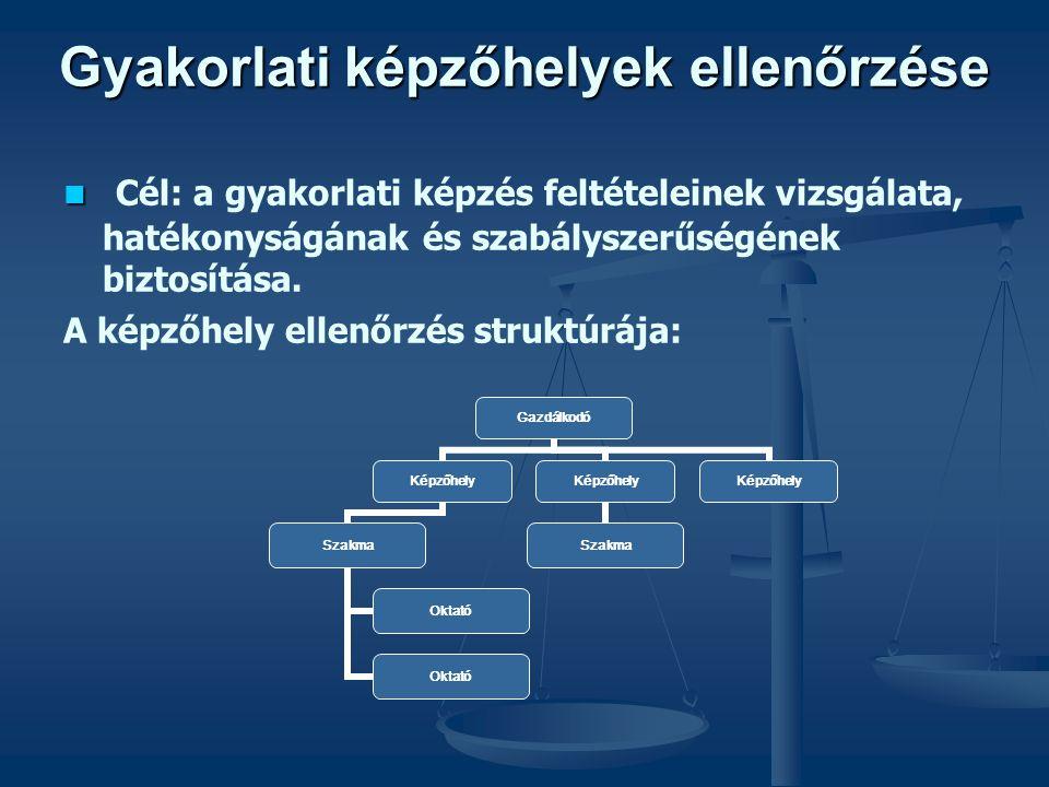Gyakorlati képzőhelyek ellenőrzése   Cél: a gyakorlati képzés feltételeinek vizsgálata, hatékonyságának és szabályszerűségének biztosítása. A képzőh