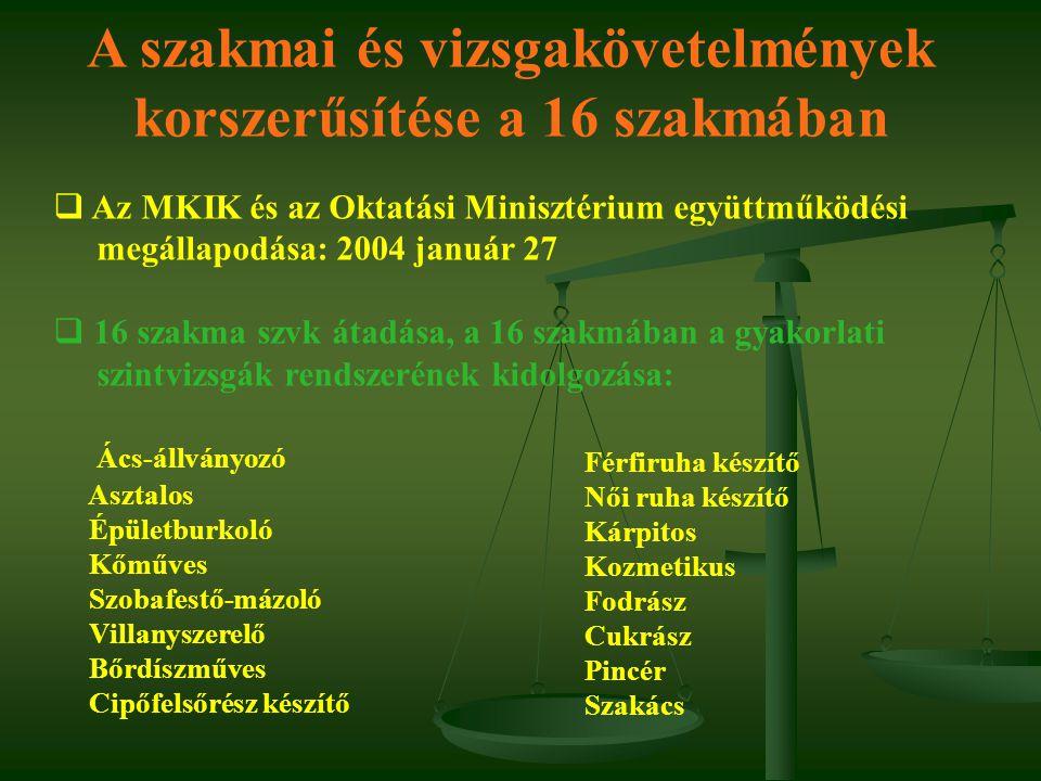 A szakmai és vizsgakövetelmények korszerűsítése a 16 szakmában  Az MKIK és az Oktatási Minisztérium együttműködési megállapodása: 2004 január 27  16