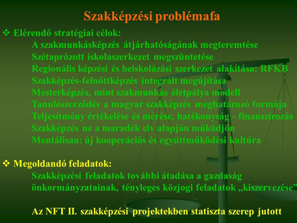 Szakképzési problémafa  Elérendő stratégiai célok: A szakmunkásképzés átjárhatóságának megteremtése Szétaprózott iskolaszerkezet megszüntetése Region