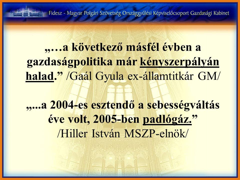 """""""…a következő másfél évben a gazdaságpolitika már kényszerpályán halad. /Gaál Gyula ex-államtitkár GM/ """"...a 2004-es esztendő a sebességváltás éve volt, 2005-ben padlógáz. /Hiller István MSZP-elnök/"""