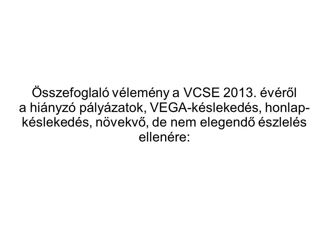 Összefoglaló vélemény a VCSE 2013.