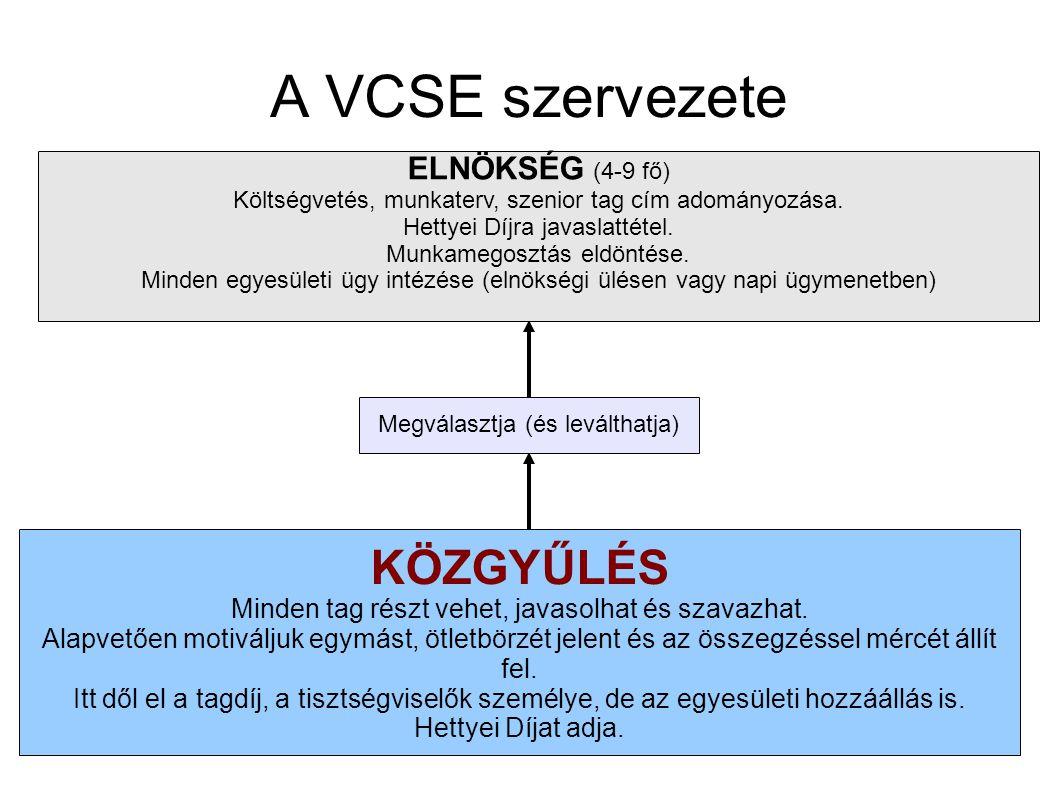 A VCSE szervezete KÖZGYŰLÉS Minden tag részt vehet, javasolhat és szavazhat.