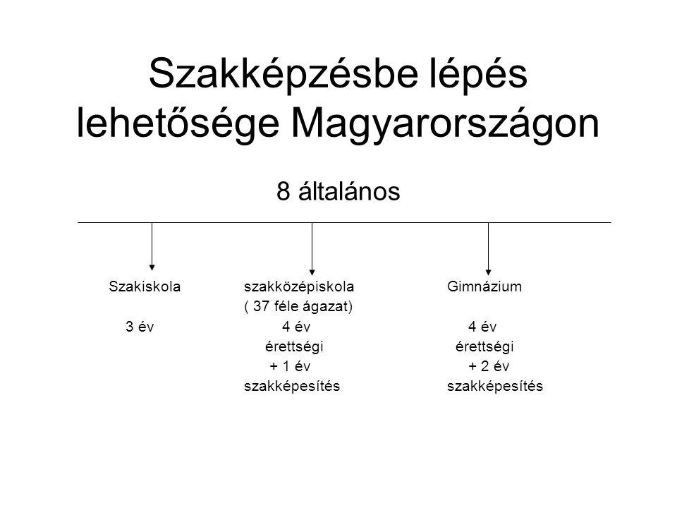 Szakképzésbe lépés lehetősége Magyarországon 8 általános SzakiskolaszakközépiskolaGimnázium ( 37 féle ágazat) 3 év 4 év 4 év érettségi érettségi + 1 é