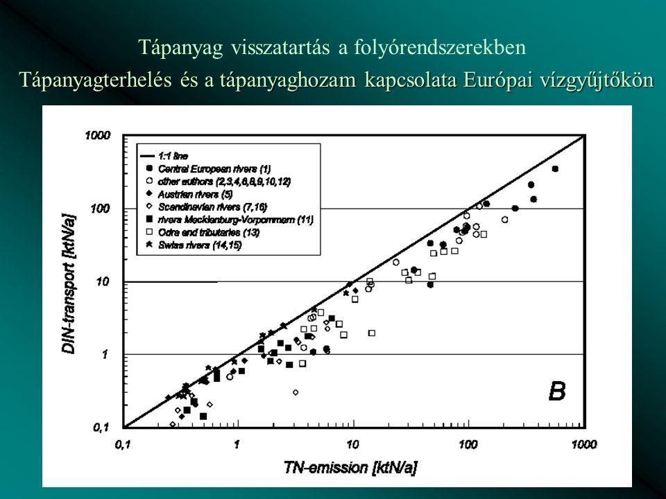 Tápanyag visszatartás a folyórendszerekben Tápanyagterhelés és a tápanyaghozam kapcsolata Európai vízgyűjtőkön