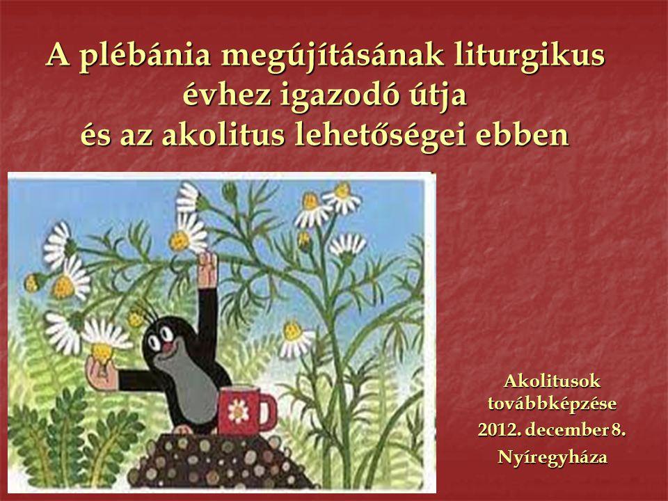 A plébánia megújításának liturgikus évhez igazodó útja és az akolitus lehetőségei ebben Akolitusok továbbképzése 2012. december 8. Nyíregyháza