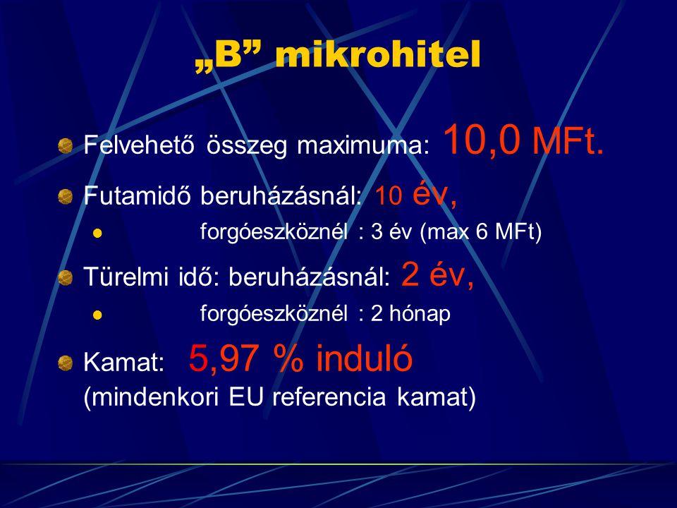 """""""B"""" mikrohitel Felvehető összeg maximuma: 10,0 MFt. Futamidő beruházásnál: 10 év,  forgóeszköznél : 3 év (max 6 MFt) Türelmi idő: beruházásnál: 2 év,"""