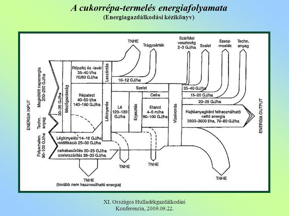 Különbség a pirolizáló és égetéses eljárásokkal szemben: 1.Egyetlen egységben történik a szárítás, depolimerizáció, pirolízis és szintézisgáz képződés 2.A nyert gáz magas hőmérsékletű szén ágyon keresztül kátránymentesen nyerhető 3.A szintézisgáz nyomnyi szennyezéseken kívül csak szén- dioxidot, hidrogént és szén-monoxidot tartalmaz 4.A nyomnyi szennyezések hőveszteség nélkül eltávolíthatók 5.Kéménymentes technológia 6.A szervetlen komponensek kiválasztásra kerülnek az eljárás előtt és hasznosíthatók XI.