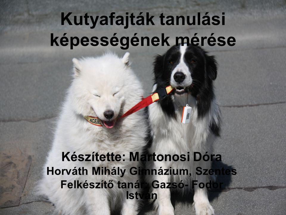 Bevezetés: •2 kutya fajta (samoyed, border collie) tanulási képességét vizsgáltam meg, klikker segítségével.
