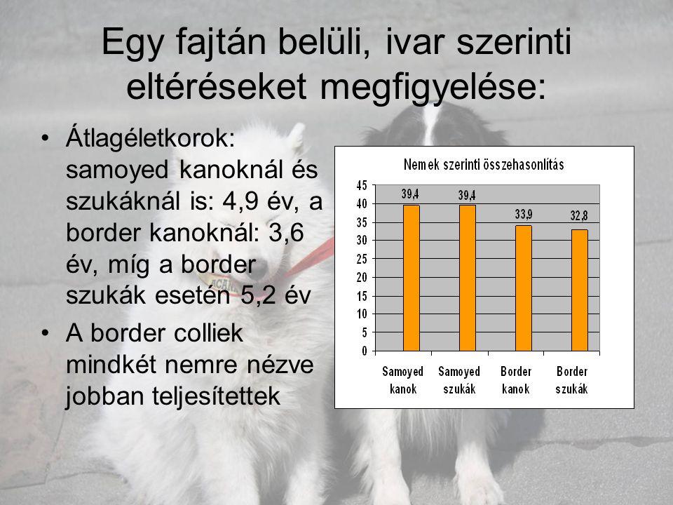Egy fajtán belüli, ivar szerinti eltéréseket megfigyelése: •Átlagéletkorok: samoyed kanoknál és szukáknál is: 4,9 év, a border kanoknál: 3,6 év, míg a