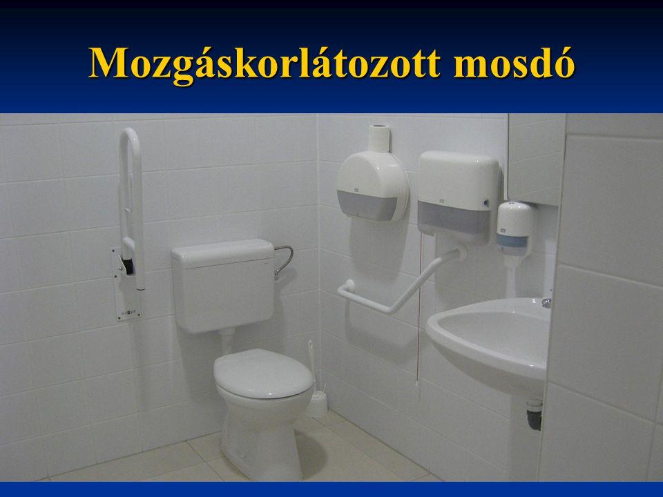 Mozgáskorlátozott mosdó