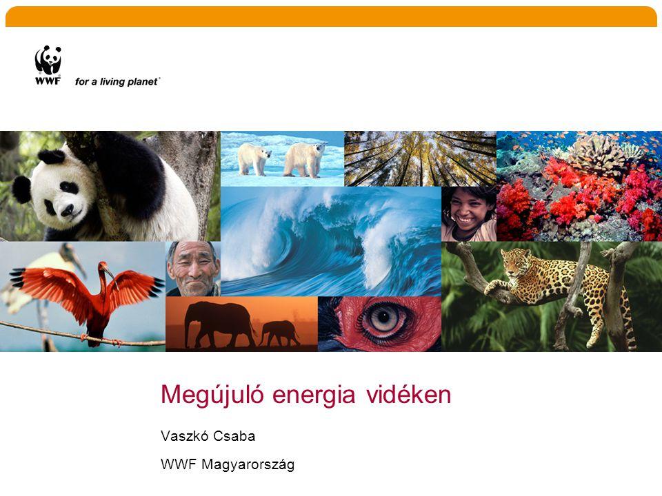 Megújuló energia vidéken Vaszkó Csaba WWF Magyarország