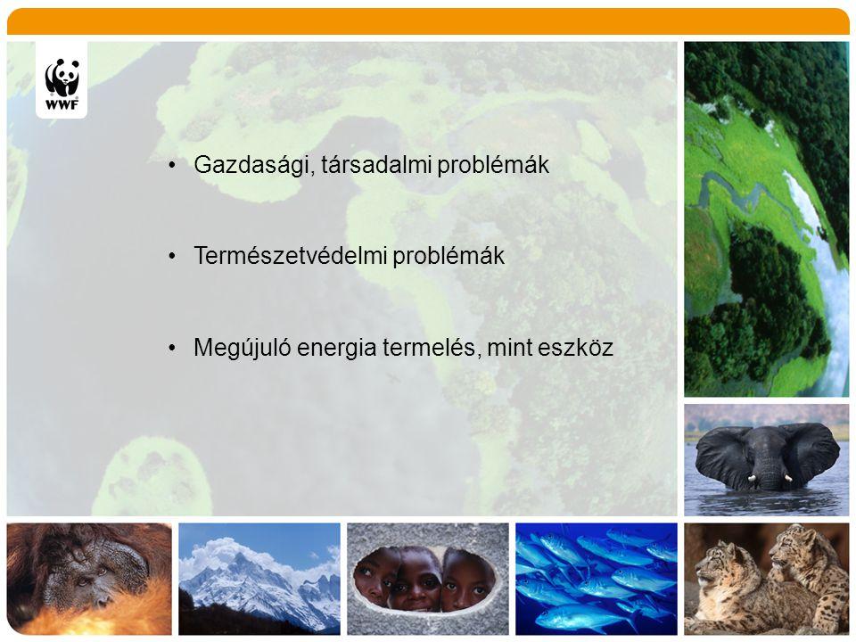 Energiaültetvények Felhasználó Özönnövények