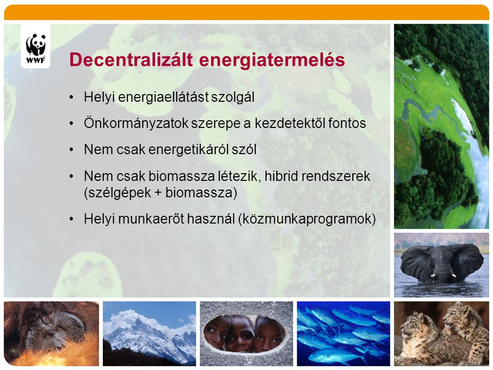 Decentralizált biomassza hasznosítás •Fosszilis energiahordozók kiváltása, •A helyi környezet állapotának javítása •Helyi értékteremtés, munkalehetőség •Jövedelmek helyben tartása •Közösségi tudat és összetartás erősítése •Helyi alapanyagot használ