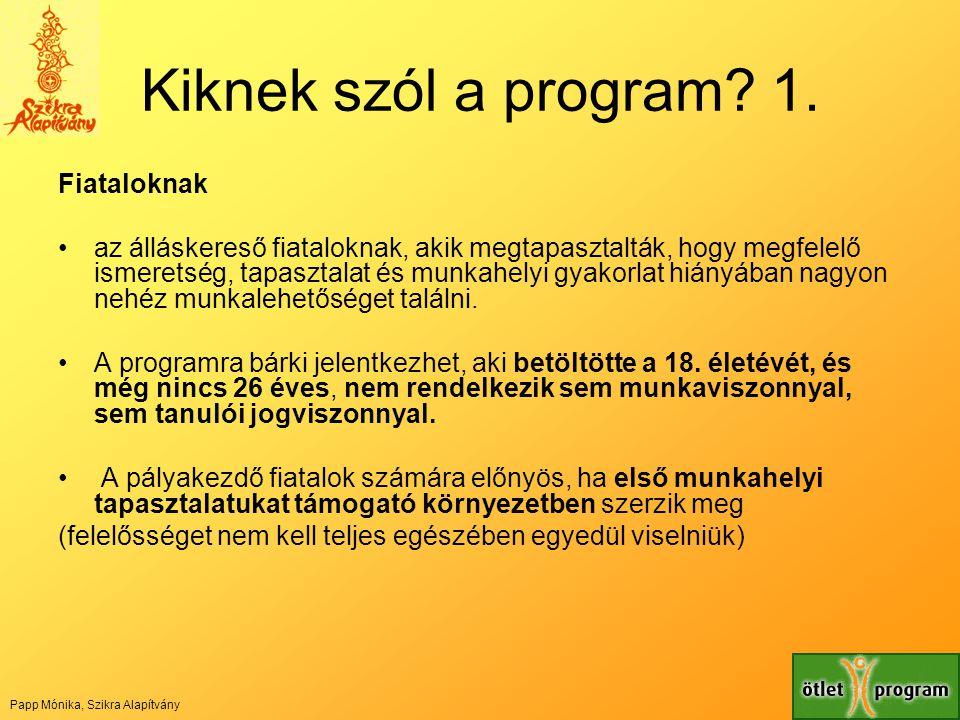 Kiknek szól a program? 1. Fiataloknak •az álláskereső fiataloknak, akik megtapasztalták, hogy megfelelő ismeretség, tapasztalat és munkahelyi gyakorla